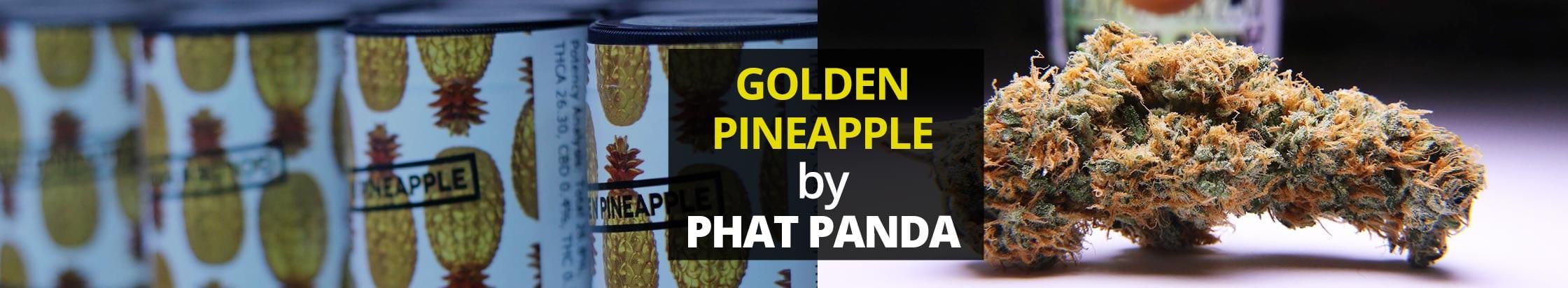golden-pineapple-phat-panda-slice
